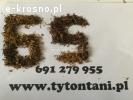 Tani Tytoń Hurtownia Tytoniu 65 zł za kg www.tytontani.pl